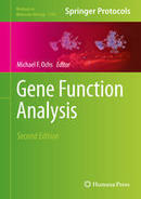 Construction and Application of Site-Specific Artificial Nucleases for Targeted Gene Editing - Methods Mol. Biol. | -Bacteriophage | Scoop.it