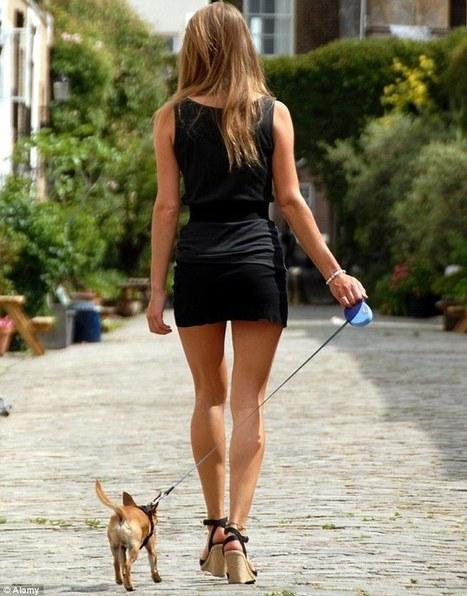Want new friends? Get a dog | Kickin' Kickers | Scoop.it