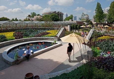 the edible landscape garden – a deliciously green idea - The Alternative Consumer | Garden Libraries | Scoop.it
