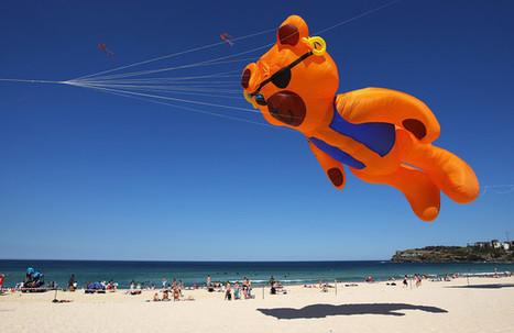 Сиднейский фестиваль ветров во славу воздушных змеев   Amuze   Scoop.it