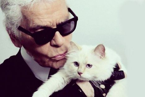 Karl Lagerfeld opens first London store, meet his adorable spoiled princess Choupette | CaniCatNews-actualité | Scoop.it