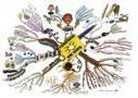 Le Mind Mapping, couteau suisse du cerveau ? - L'Orient-Le Jour | Apprentissage en ligne | Scoop.it