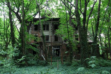 Great #Urbex example : Abandoned Island in the Middle of NYC | Photography Technics | Scoop.it