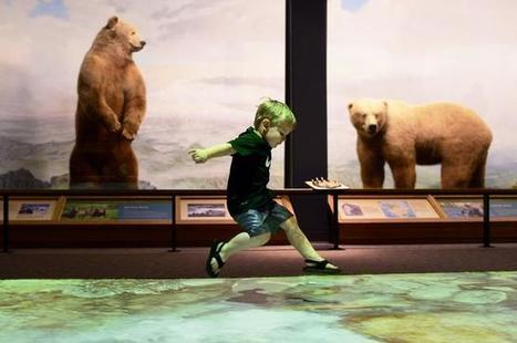 Denver Museum of Nature & Science balances tradition, technology | Museums and emerging technologies | Scoop.it