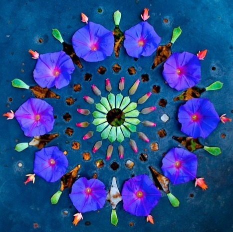 Mandalas florales de Kathy Klein « Artesaniaflorae | artesaniaflorae | Scoop.it