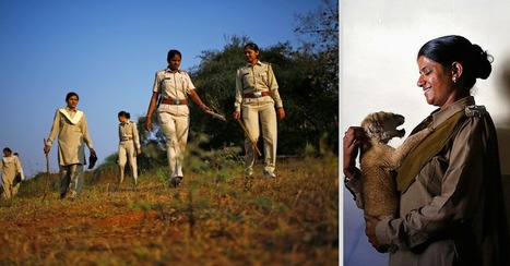 Guardians of Gir: This All-Female Wildlife Rescue Team Is Unlike Any in the World | This Gives Me Hope | Scoop.it