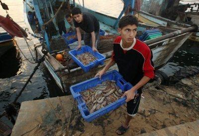 BANDE DE GAZA : L'incroyable défaite d'Israël se matérialise sur leterrain | Le Monde Arabe | Scoop.it