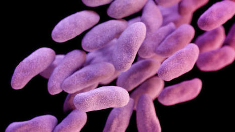 Superbug Found For The First Time In A U.S. Woman | Conservative Politics | Scoop.it