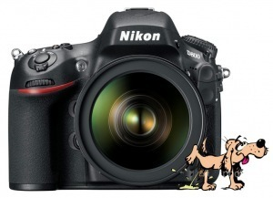 Canon 5D Mark III VS Nikon D800 Image Quality – DXOMark Sucks ... | Nikon D800 News | Scoop.it