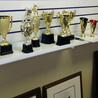Trophies & Awards in GTA