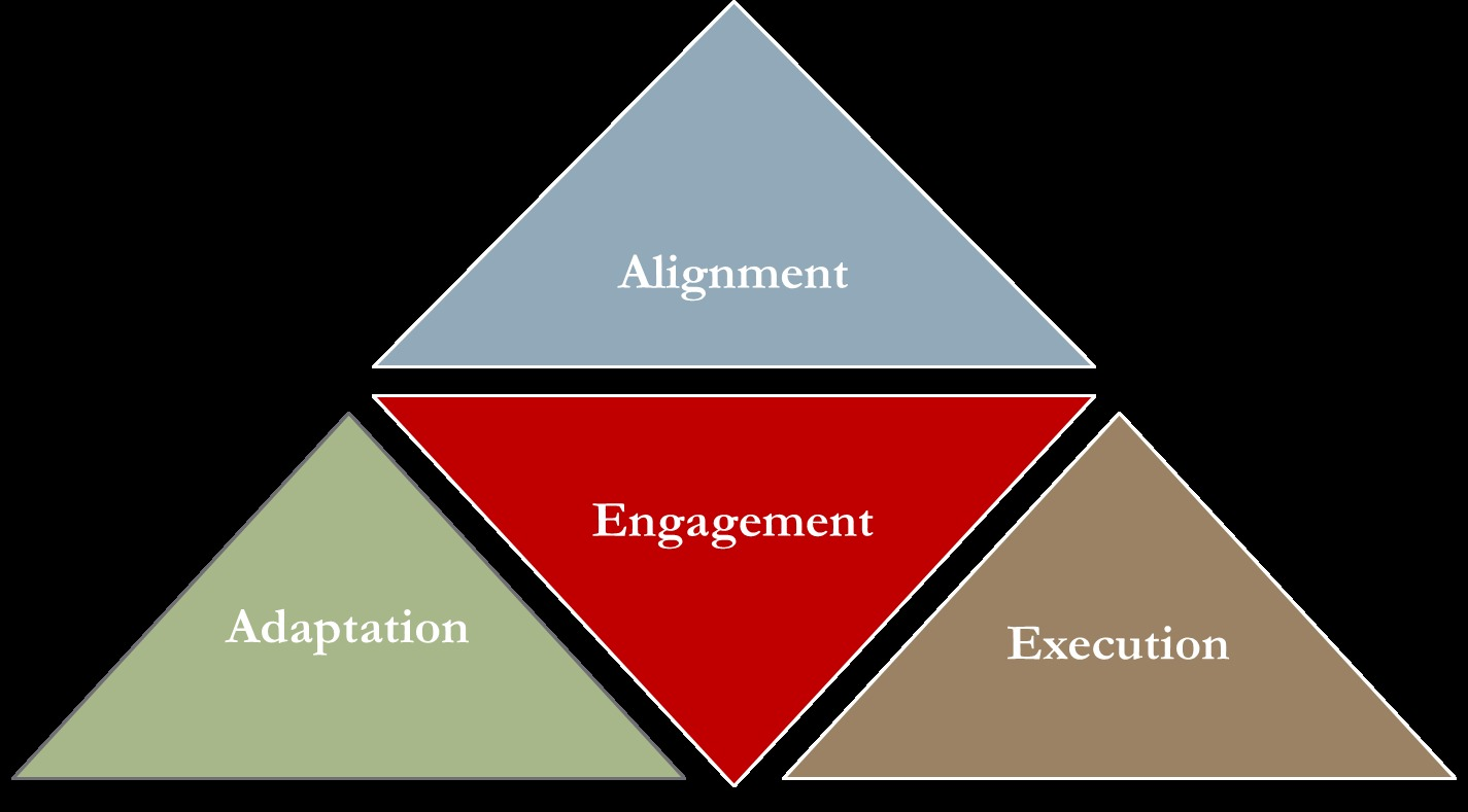 Improving Organizational Effectiveness & Performance