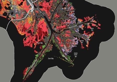 Wetlands Worth their Weight | Ohio Wetlands | Scoop.it