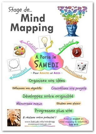 Stages de Mind Mapping & Créativité à Paris | Conceptual Map | Scoop.it