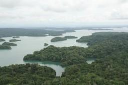Canal de Panamá mantiene acciones para conservar recursos hídricos | Canal de Panamá | Agua | Scoop.it