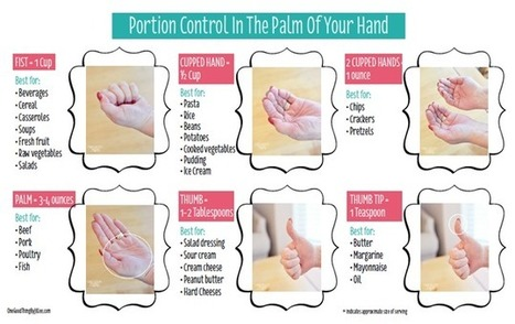 Portion Control In The Palm Of Your Hand   One Good Thing by Jillee   Healthy Recipes and Tips for Healthy Living   Scoop.it