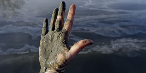 Tweak To NC Law Protected Duke's Coal Ash Pits | It Comes Undone-Think About It | Scoop.it