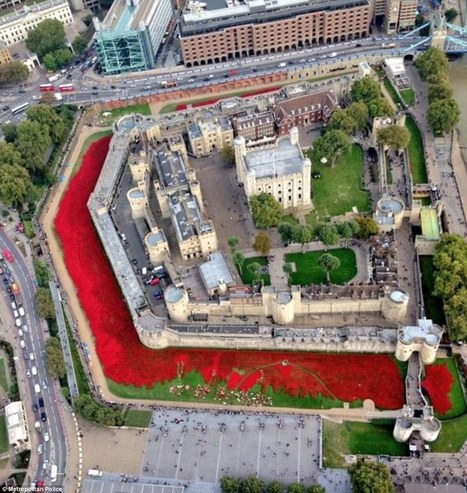 Tower of London aerial photo shows 900k poppies art installation - Daily Mail | World War 1 | Scoop.it