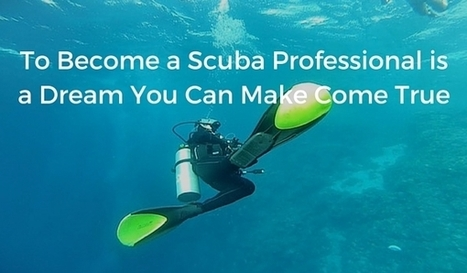 Here is How You Can Turn Scuba Diving Into a Successful Career | All about water, the oceans, environmental issues | Scoop.it