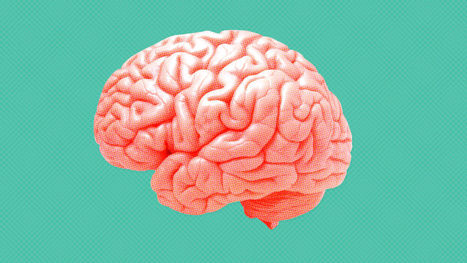 How Your Brain Reacts To Change | Thinking, Learning, and Laughing | Scoop.it
