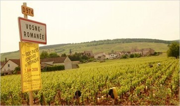 Chinese wine lover snaps up Vosne-Romanee vines | Burgundy Flavour | Scoop.it