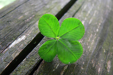 Being Lucky is Hard Work | développement personnel | Scoop.it