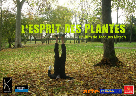 L'esprit des Plantes - 52 mn - Arte TV - 2009 | documentaires | Scoop.it