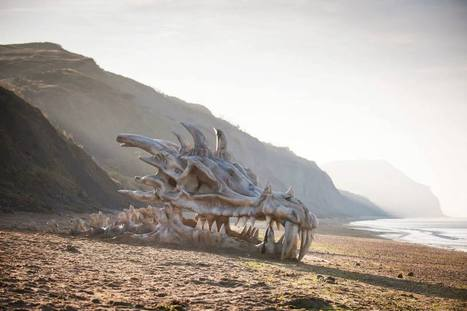 Giant 40-foot dragon skull on the Beach | Cool Art | Scoop.it