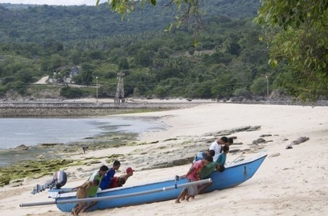 Climate Change's Impact on Timor's Coral Reefs | Coral Reef | Scoop.it