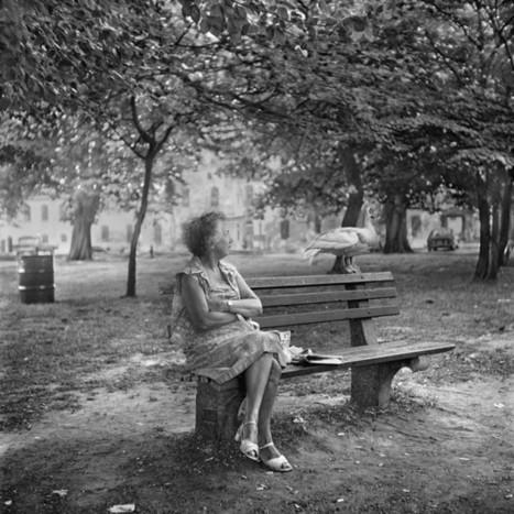 Considering the Past | Fotografía y Música | Scoop.it