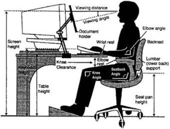 The Eco - Senior: Computer Workstation Ergonomics. | Computer Workstation Ergonomics | Scoop.it