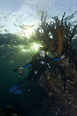 #IUCN - There is hope for the #Ocean ~ 23.10.13 news.. + #MissionBlue #NoBlueNoGreenNoOceanNoUs | Rescue our Ocean's & it's species from Man's Pollution! | Scoop.it