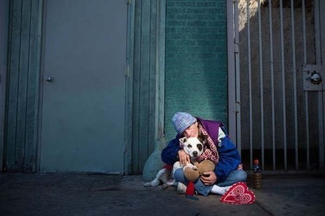 Next Time You See A Homeless Person With A Dog, Just Remember This.. | Evrystry (because EVERY STORY matters) | Scoop.it