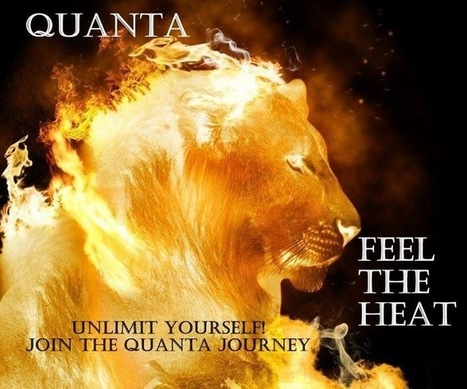 A Home Based Business Opportunity like no other Quanta | Wealth Within Your Reach | Scoop.it