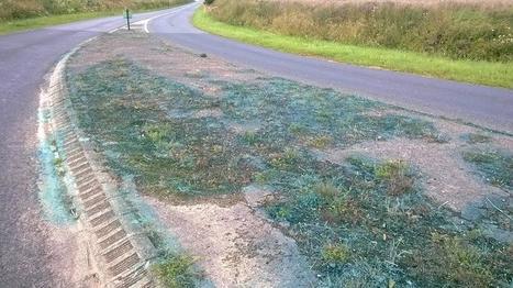Utilisation d'herbicide puissant en bord de route à Capelle-lès ... - La Voix du Nord | Pesticides et biocides | Scoop.it