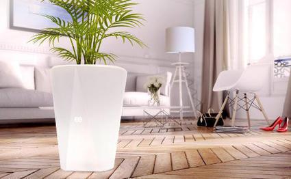 MEG, un pot de fleurs connecté et lumineux pour le jardin   Connected-Objects.fr   Objets Connectés   Scoop.it