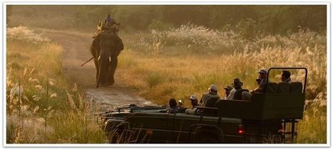 Taj Mahal with Wildlife Safari, Taj Mahal Wildlife Tour Packages India | Visit India | Scoop.it