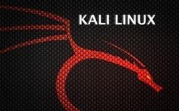 Kali Linux 1.0.6 z opcją wymazywania instalacji | OSWorld.pl | Linux | Scoop.it