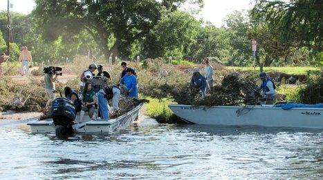 New bass habitat coming soon to Lake Austin - Austin American-Statesman | Fish Habitat | Scoop.it
