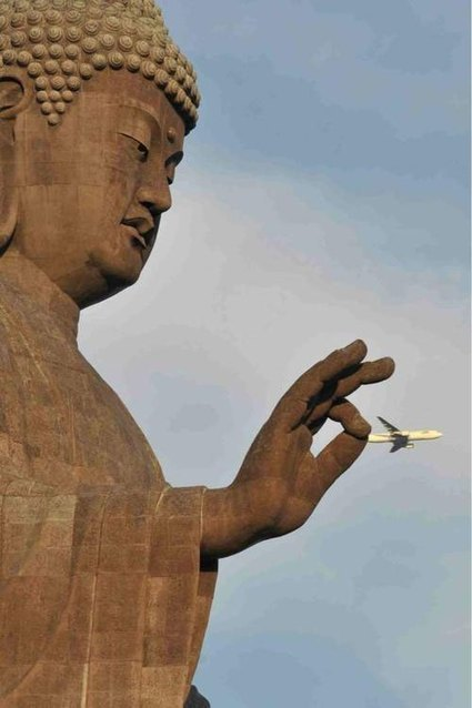 The 50 Most Perfectly Timed Photos Ever | Visual and Creative Arts | Scoop.it