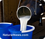 CDC admits not a single person has died from consuming raw milk products in 11 years | MN News Hound | Scoop.it