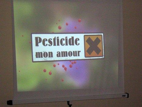 Le trafic des pesticides interdits est en plein boom | Abeilles, intoxications et informations | Scoop.it