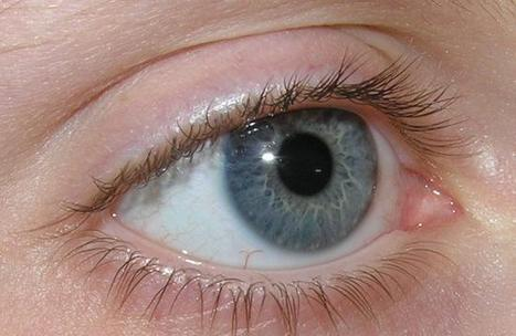 Password of the future: Your eye movement | Eye Tracking for Use in Mobile Devices | Scoop.it