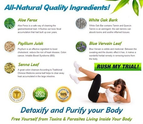 Interested In Cleanse FX? Don't BUY! Read This First!!! | How Your Health Is Affected | Scoop.it