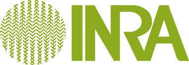 Inra - Médiathèque | Outils de recherche pour les TPE des filières scientifiques, économiques et sociales | Scoop.it