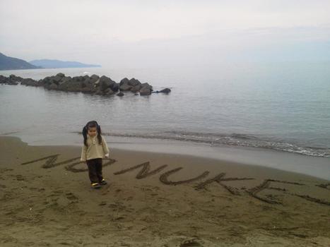Plus que 4 ! | Japan Tsunami | Scoop.it