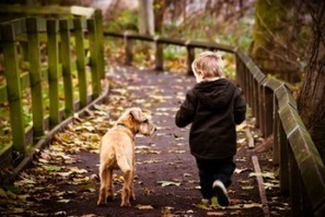 Learn How Young Children and Pets Respond to Stressful Situations | Uplifting Families | Scoop.it