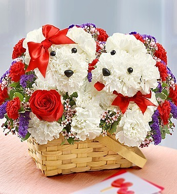 Gifts & Flowers Delivery in Bangalore - Send My Gift | Send My Gifts | Scoop.it