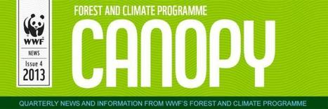 CANOPY: REDD+ News from the WWF Forest and Climate Programme | WWF news | Scoop.it