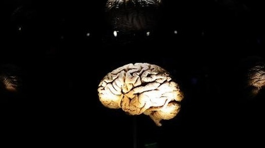 Researchers: Brain inflammation 'very common' a...