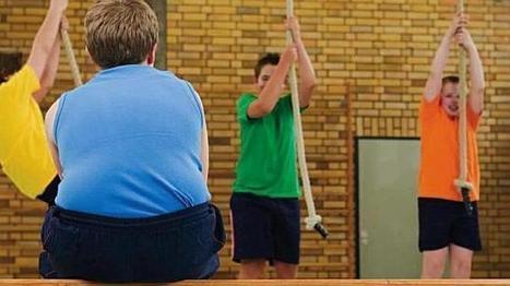 Un modelo matemático predice los efectos que la dieta y la ... - ABC.es | Educación Física-Prof. Facundo | Scoop.it